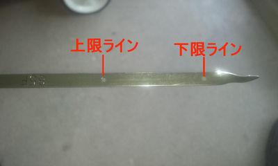 DCF00818.JPG