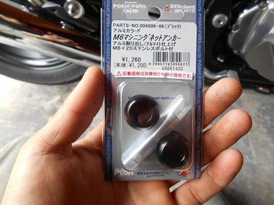 DSCN0601_R.JPG